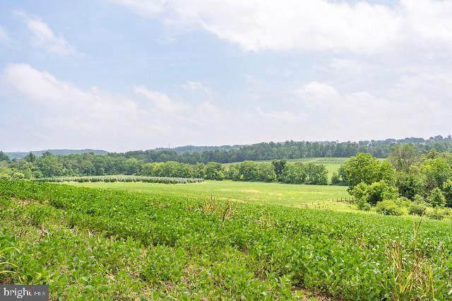Furnace Hills Pike, LITITZ, PA 17543 (#PALA2003444) :: The Joy Daniels Real Estate Group