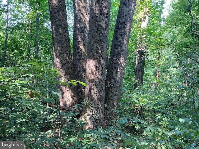 0 Dogwood Drive, EPHRATA, PA 17522 (#PALA2003582) :: Flinchbaugh & Associates