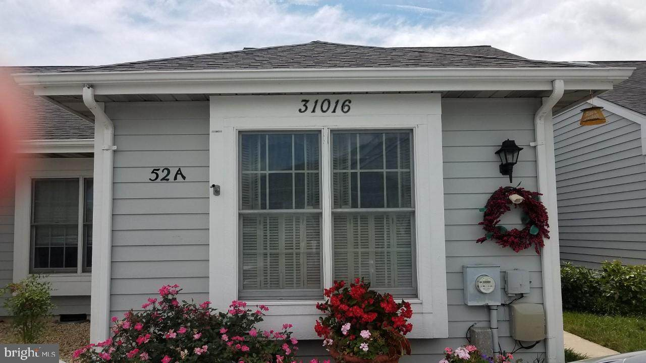 31016 Crepe Myrtle Drive - Photo 1