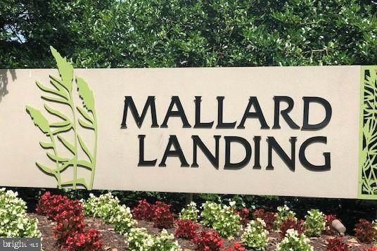 1105 S Schumaker Drive B200, SALISBURY, MD 21804 (#MDWC2001174) :: McClain-Williamson Realty, LLC.