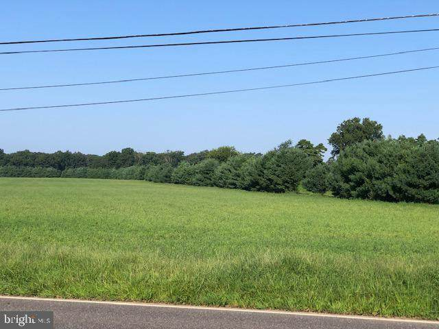 Blk 22/Lot 10.02 -QF Route 206, SHAMONG, NJ 08088 (#NJBL2006128) :: Holloway Real Estate Group