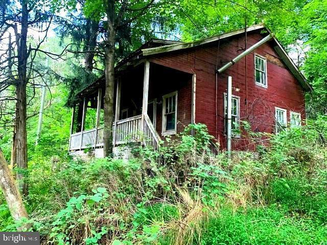 190 Dove Hollow Rd, BAKER, WV 26801 (#WVHD2000248) :: Dart Homes