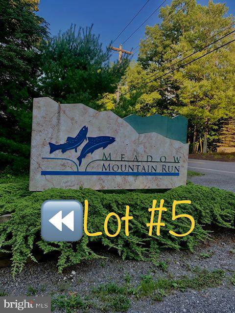 Meadow Mountain Run Drive, SWANTON, MD 21561 (#MDGA2000854) :: Dart Homes