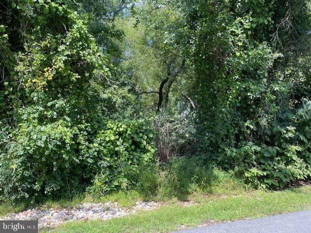 1352 Fishing Creek Road, ANNAPOLIS, MD 21403 (#MDAA2008830) :: The Sky Group