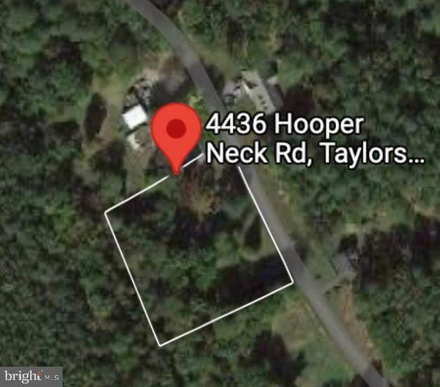 4436 Hooper Neck Road, TAYLORS ISLAND, MD 21669 (#MDDO2000636) :: McClain-Williamson Realty, LLC.