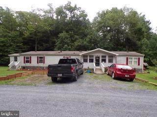 202 Village Road, MOUNT STORM, WV 26739 (#WVGT2000086) :: Shamrock Realty Group, Inc