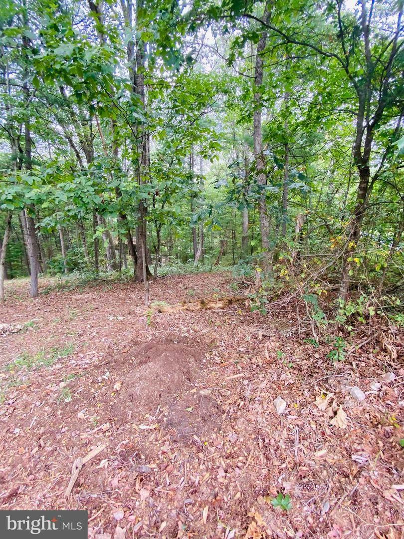 LOT 294 Cottonwood Drive - Photo 1
