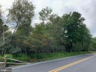 Stony Mountain Road - Photo 1