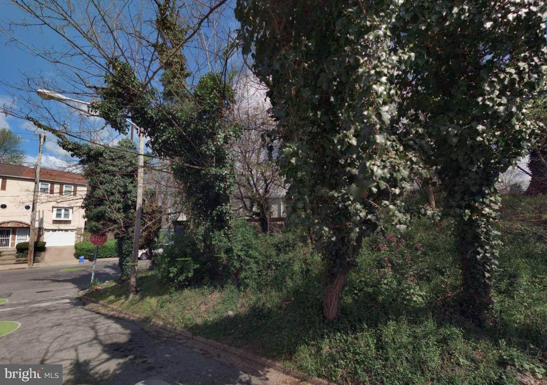 420 Gorgas Lane - Photo 1