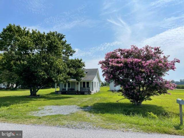 500 Dun Swamp Road, POCOMOKE CITY, MD 21851 (#MDWO2002654) :: Keller Williams Realty Centre