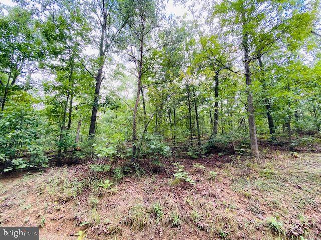 Hogue Creek Estates L13, WINCHESTER, VA 22602 (#VAFV2002064) :: The Mike Coleman Team