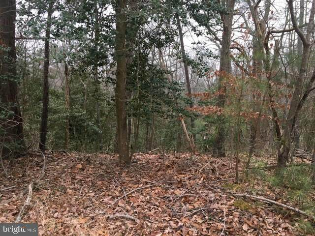 1138 Ranger Ridge Road - Photo 1