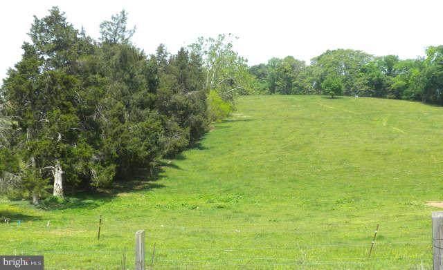 Middle, STRASBURG, VA 22657 (#VASH2001096) :: Nesbitt Realty