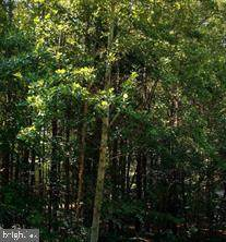 1200 Eastover Parkway, LOCUST GROVE, VA 22508 (#VAOR2000952) :: RE/MAX Cornerstone Realty