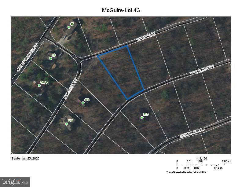 Lot 43 Locust Lane - Photo 1
