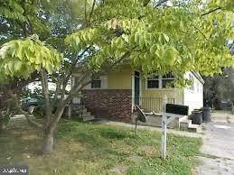 316 Jackson Avenue, MAGNOLIA, NJ 08049 (#NJCD2009060) :: Daunno Realty Services, LLC