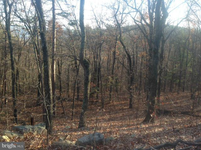 Panorama View Dr., STANLEY, VA 22851 (#1000137721) :: Eng Garcia Grant & Co.