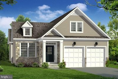 Trumpet Vine Dr, WHITE POST, VA 22663 (#1000139807) :: Debbie Dogrul Associates - Long and Foster Real Estate