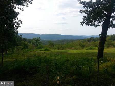 Farm View Drive, ROMNEY, WV 26757 (#1000149041) :: AJ Team Realty