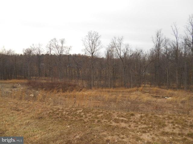 Lot #6 Evelyn Drive, ELIZABETHTOWN, PA 17022 (#1002667167) :: Benchmark Real Estate Team of KW Keystone Realty