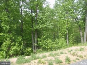 30 Valley View Drive Lot#54 - Photo 1