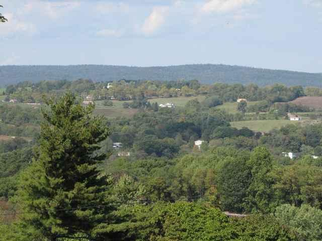LOT Route 225 Peters Mountain Road, HALIFAX, PA 17032 (#1000411850) :: The Joy Daniels Real Estate Group