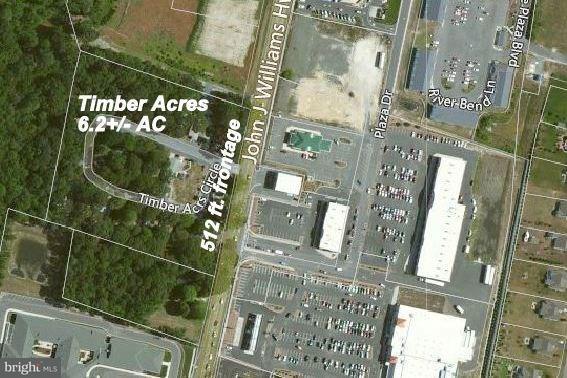 31878 Timber Acres Circle, MILLSBORO, DE 19966 (#1001567952) :: Barrows and Associates