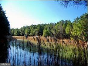 23 Beaver Dam Way, LEWES, DE 19958 (#1001573182) :: Brandon Brittingham's Team
