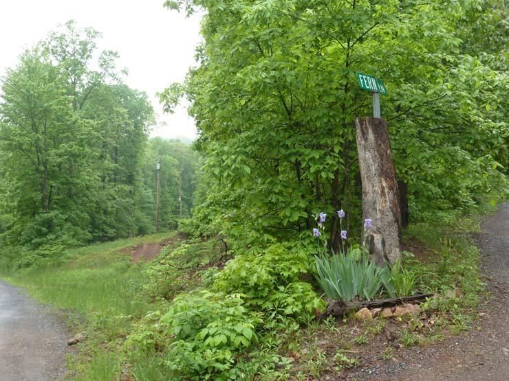 Lot 7 Nealman Road - Photo 1