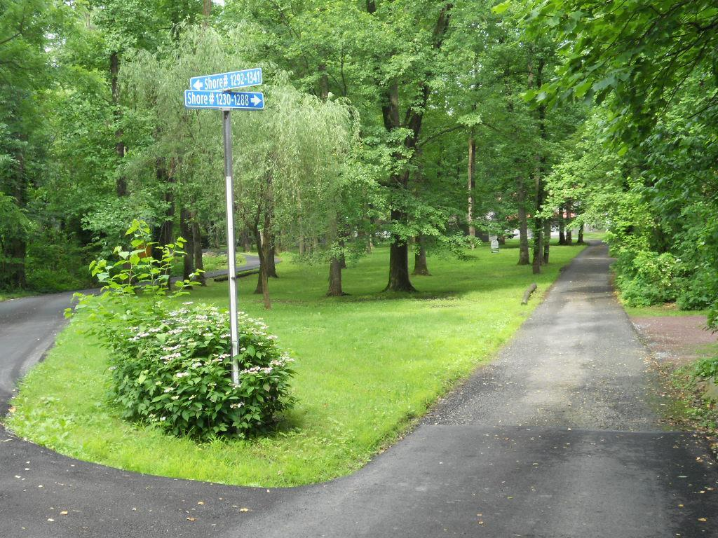 1250 Shore Lane - Photo 1