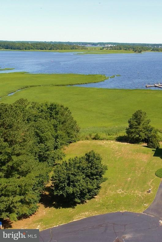 324 Baywinds Court, DAGSBORO, DE 19939 (#1001933016) :: RE/MAX Coast and Country