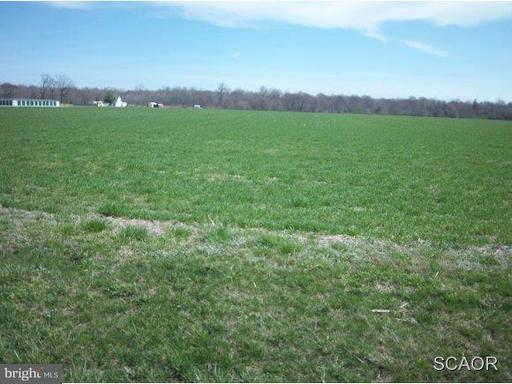 12771 Sussex Highwy Route 13, GREENWOOD, DE 19950 (#1002113622) :: The Delmarva Group