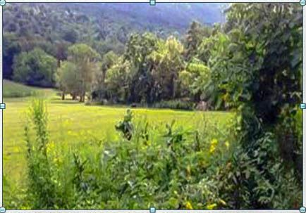 17399 Loves Valley Road #12, SHIRLEYSBURG, PA 17260 (#1002358078) :: LoCoMusings