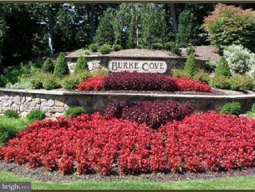 5936 Cove Landing Road 202B, BURKE, VA 22015 (#1008353898) :: Bob Lucido Team of Keller Williams Integrity