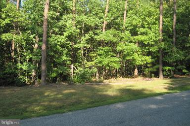 Pine Harbour Dr. Drive, MINERAL, VA 23117 (#VALA100836) :: RE/MAX Cornerstone Realty