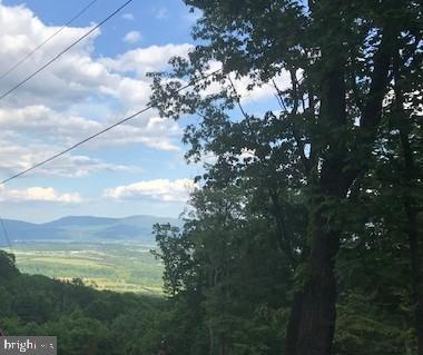 Forest Dr Ext Lot 26D, LURAY, VA 22835 (#VAPA104430) :: Arlington Realty, Inc.