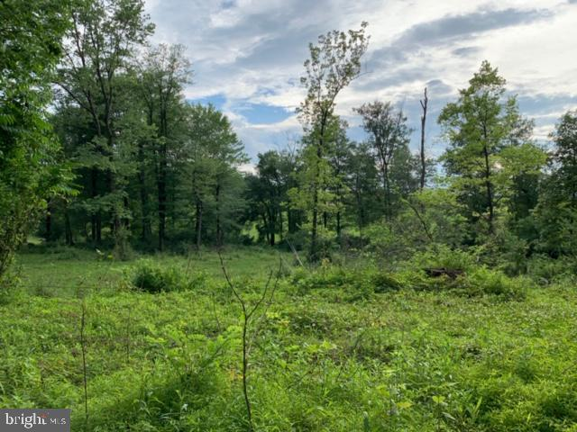 0 Locust Grove Road Lot 2, MIDDLETOWN, PA 17057 (#PADA111720) :: Keller Williams of Central PA East