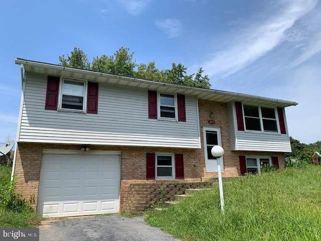 225 Buttonwood Drive, ELIZABETHTOWN, PA 17022 (#PALA137464) :: Liz Hamberger Real Estate Team of KW Keystone Realty