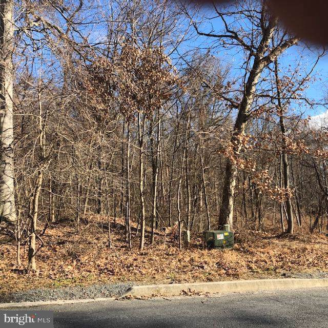 Burgoyne Drive Lot 39 & 40, NEW CUMBERLAND, PA 17070 (#PAYK131736) :: Teampete Realty Services, Inc