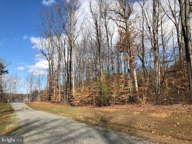 Lighthouse Point Road, BUMPASS, VA 23024 (#VALA120602) :: RE/MAX Cornerstone Realty