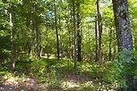 24749 Mill Pond Lane - Photo 1