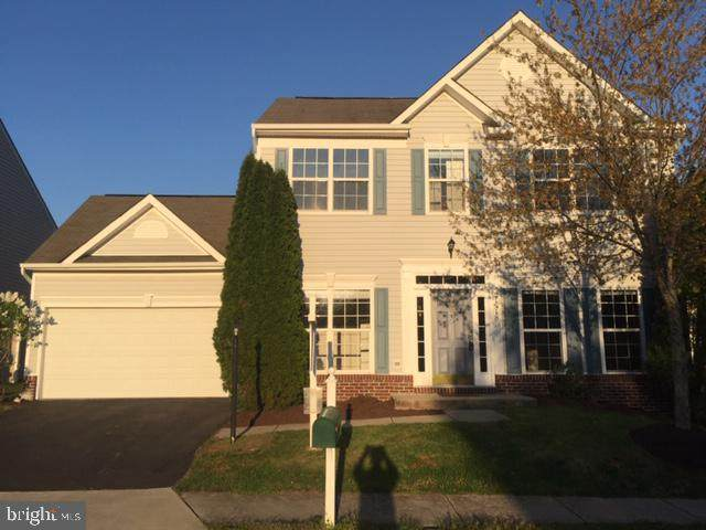 21518 Merion Street, ASHBURN, VA 20147 (#VALO407356) :: The Vashist Group