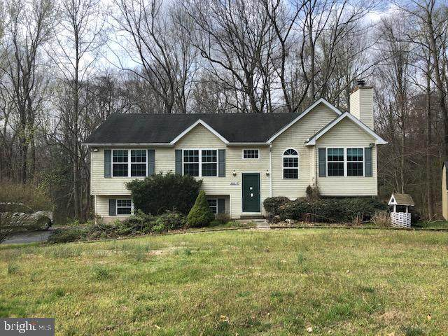 28975 Christopher Court, MECHANICSVILLE, MD 20659 (#MDSM168646) :: Radiant Home Group