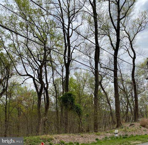 Piscataway Drive, FORT WASHINGTON, MD 20744 (#MDPG565360) :: The Sky Group