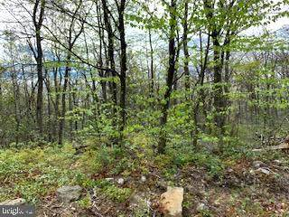 0 Mountain Falls Trail, WINCHESTER, VA 22603 (#VAFV157126) :: Pearson Smith Realty