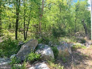 0 Mountain Falls Trail, WINCHESTER, VA 22603 (#VAFV157834) :: AJ Team Realty