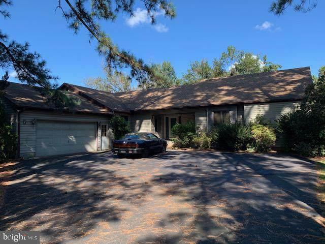 135 Lakeside Drive, LAUREL, DE 19956 (#DESU166292) :: REMAX Horizons