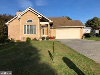 524 Meadow Lane, FRONT ROYAL, VA 22630 (#VAWR141752) :: A Magnolia Home Team