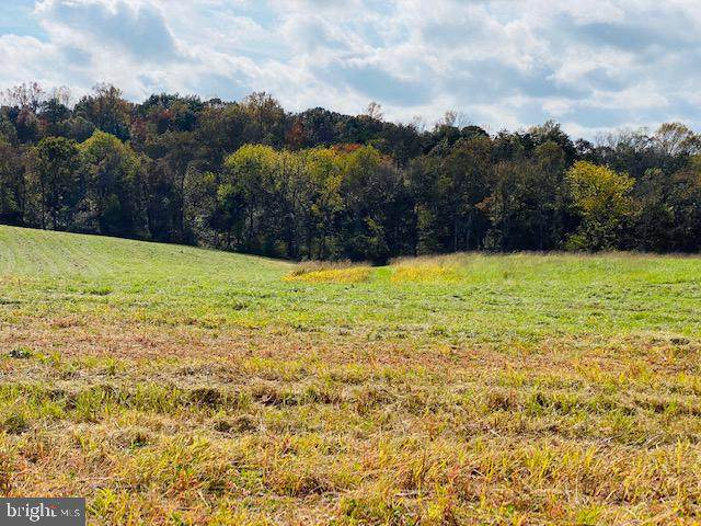 Lot 11 Mountain Ridge Way, CULPEPER, VA 22701 (#VACU142826) :: The Piano Home Group