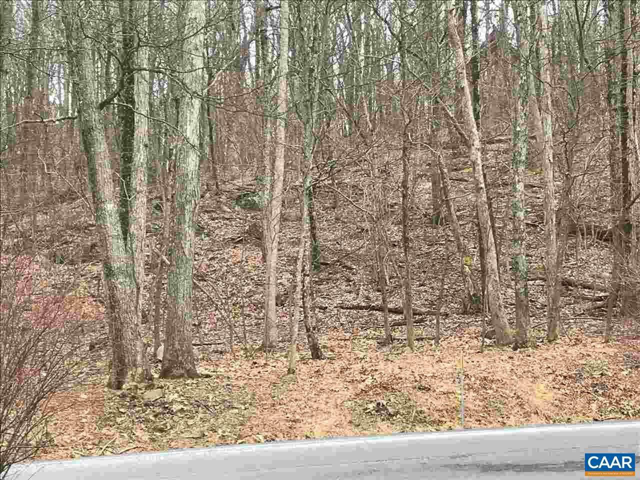 43 Deer Springs Ln Lane - Photo 1